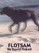 Read a Short Story   Flotsam